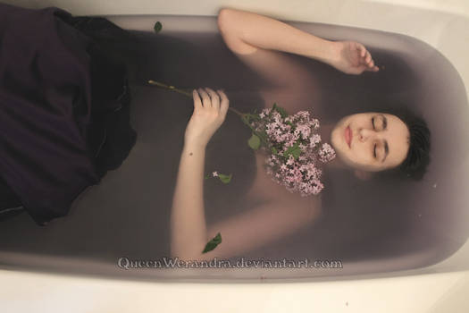 Ophelia's lilacs