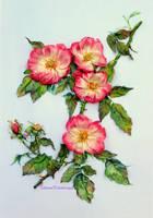 Rosehip, silk ribbon embroidery by TetianaKorobeinyk