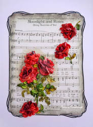 Red roses for musicial