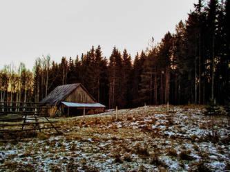 Forest warehouse by MrFotkerman