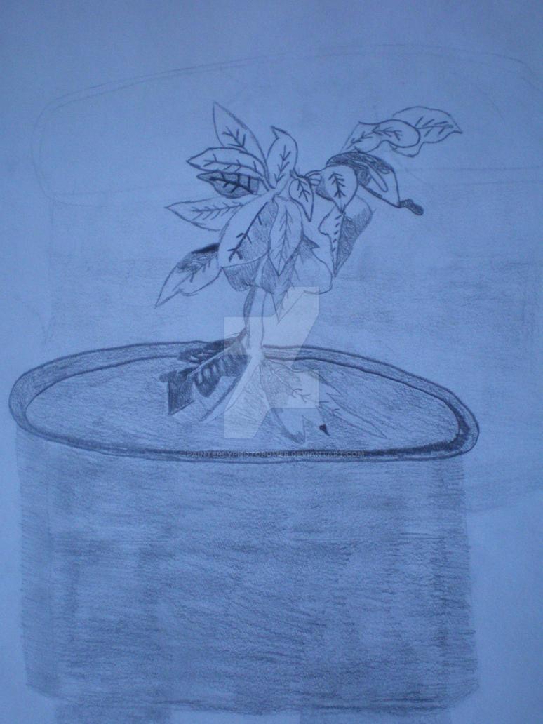 Poinsettia by Painterlyphotobomer