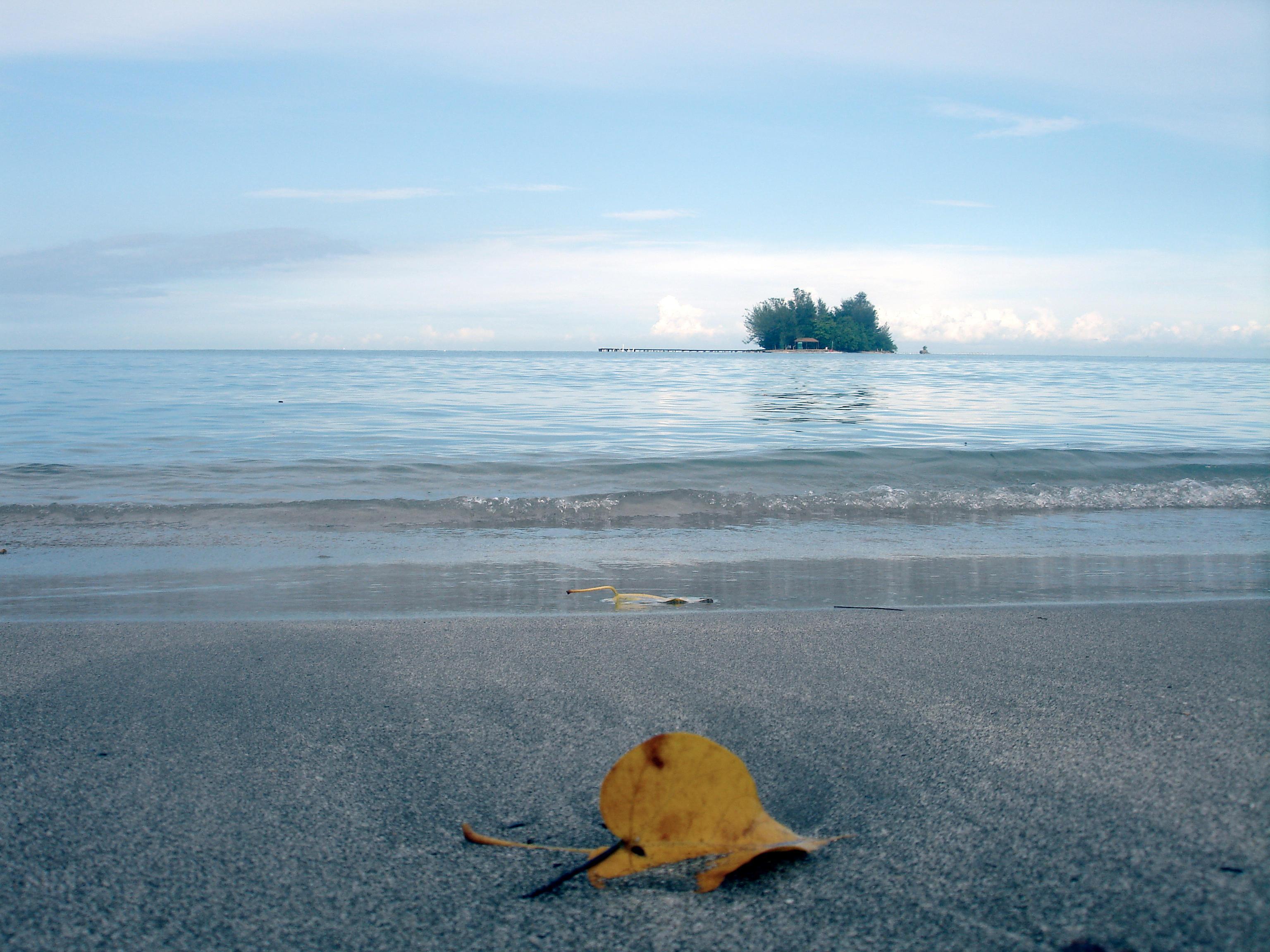 Early Tide by osoroco