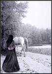 A horse and a pink corset