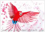 Parrot II