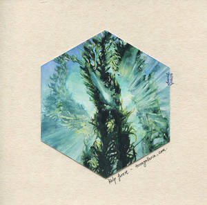 Kelp forest no.2 by abariel