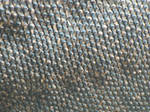 Komodo Dragon Skin Texture III