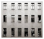 Neighbours - panopticum