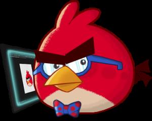 nikitabirds's Profile Picture
