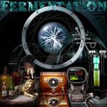 5. Fermentation