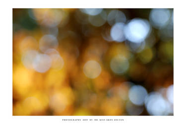 Autumn caleidoscope - IV by DimensionSeven
