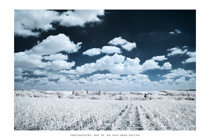 The white fields of Poga'ny by DimensionSeven