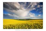 Rainbow Country - I
