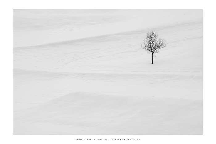 Fifteen Feet of Pure White Snow by DimensionSeven