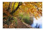 Plitvice Lakes 2012 - V