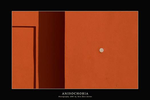 Anisochoria