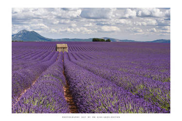 Provence - VIII by DimensionSeven