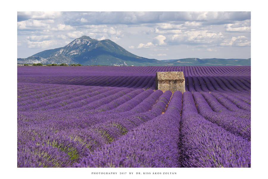 Provence - IX by DimensionSeven