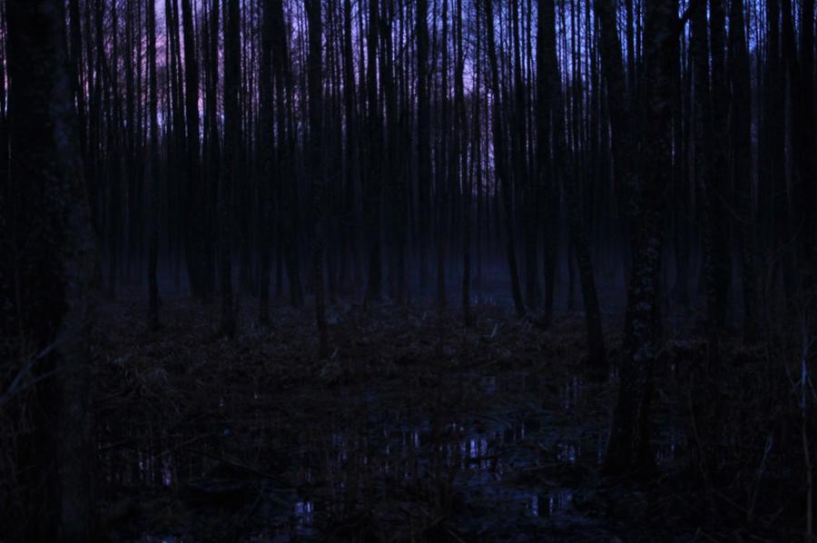 moonlight wallpapers free download