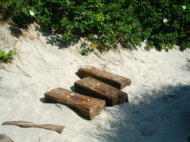 The drowning Woodsteps