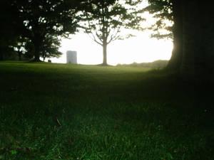 The melting grass