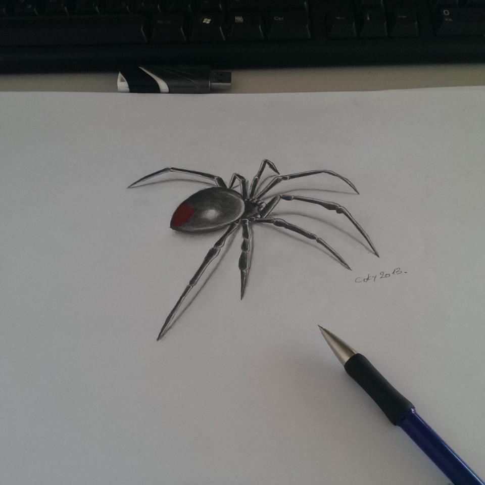 Black Widow Spider pencil art Black Widow Spider Painting