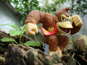 Donkey Kong in the Jungle by SuperMetroid2