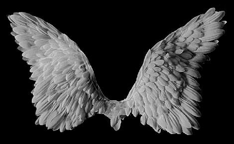 Texture Ange by Mini-Tyson