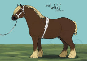 BMa Wald-Halter Entry by lantairvlea