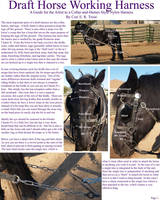 Draft Horse Working Harness I by lantairvlea