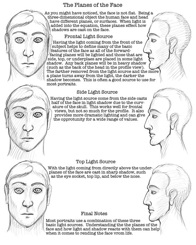 DeviantArt: More Like Facial Proportions Worksheet by lantairvlea