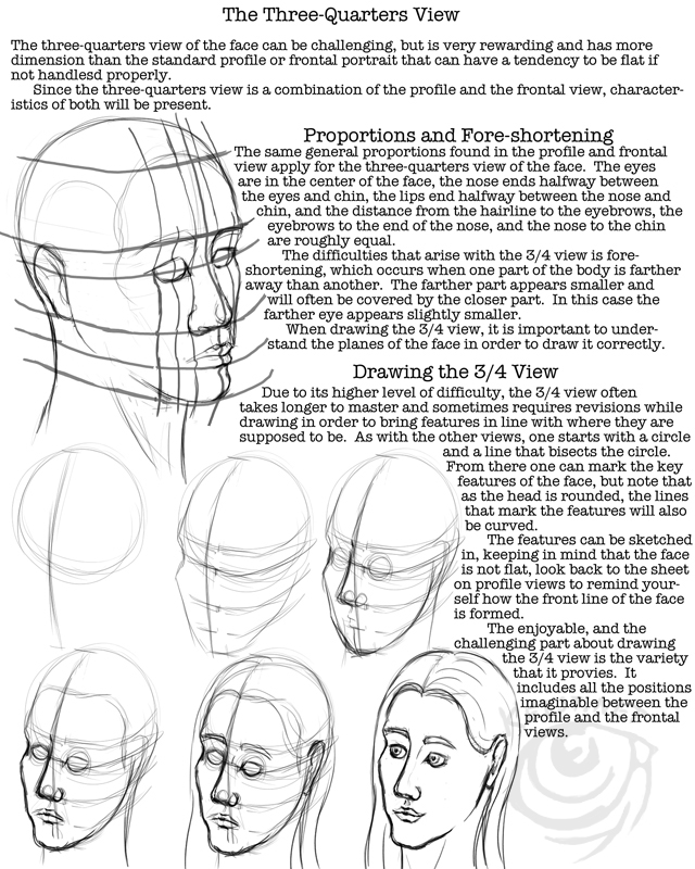 DeviantArt: More Like Facial Proportions Worksheet by lantairvlea