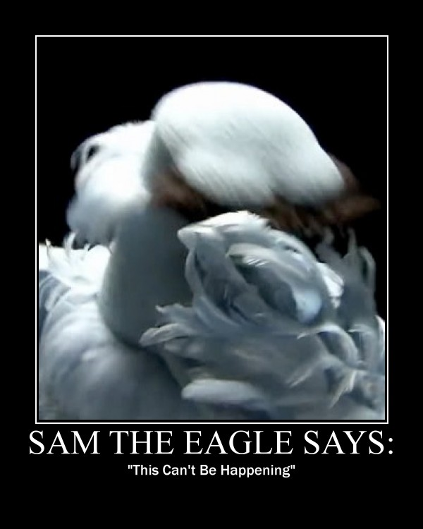 http://fc02.deviantart.net/fs71/f/2011/309/7/6/sam_the_eagle_facepalm_by_madhog-d4f66tt.jpg