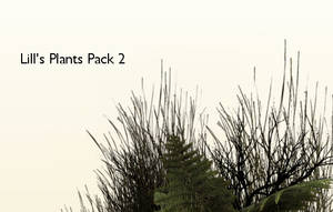 Plant Pack 2 by Lill-stock by TW3DSTOCK
