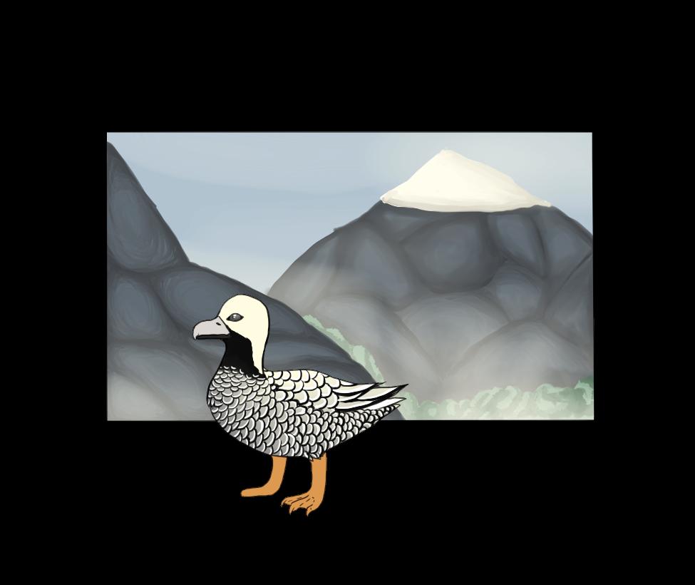 Botanica Zoo | Emperor's Goose | Jessie by LadyPipen