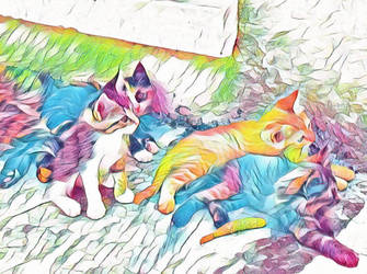 Kitty cats by CassDelau