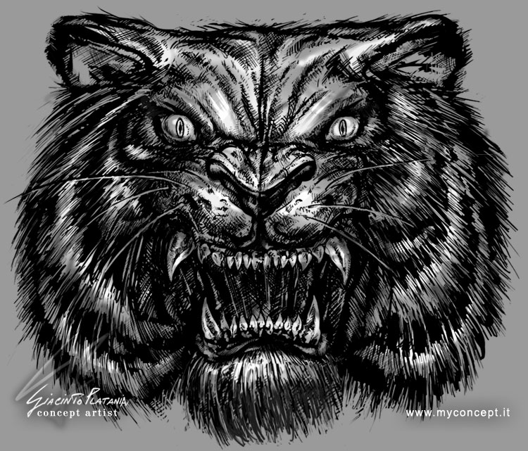 Tiger Face - Sketch by giaci78