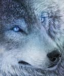 .:Blue-Eyed Demon:.