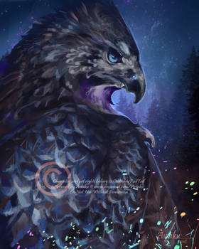 C.:Cloaked in Night:. by Aviaku