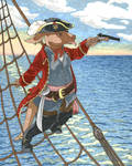 Aardvark Pirate