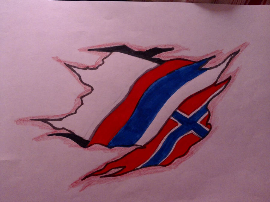 Flag tattoo by nekokoproductions on deviantart for Tattoo shop etiquette