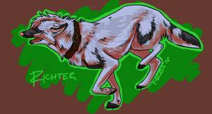 Richter by fazzle