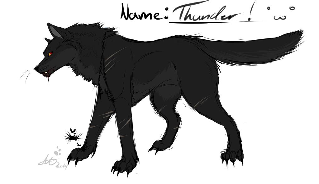 Ref Thunder by ElviraTheFennec