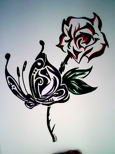 Butterfly and rose drawing - photo#15