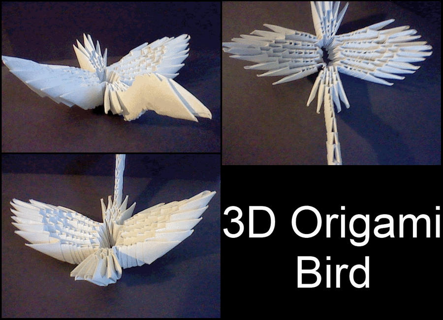 3d origami bird by xcrow9x on deviantart for How to make a 3d bird sculpture