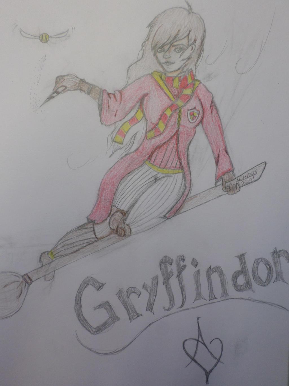 Quidditch by Zahyebah