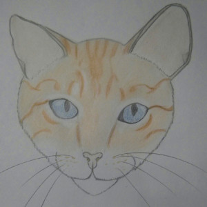 Zeldienne's Profile Picture