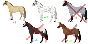 Horses adopt collab [Open 2/5] by Zeldienne