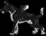 Custom Annu-Adopts - Black merle Royale