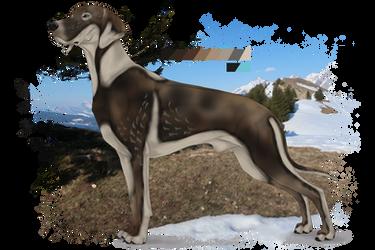 Anonymuswolf custom - Taiga gazal by Zeldienne
