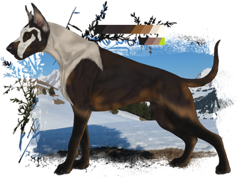 Anonymuswolf custom - Royale by Zeldienne